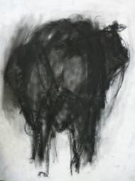 """Gonny van der Weerd, houtskooltekening """"oeros"""" afm. 49 x 60 cm."""
