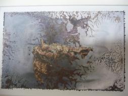 """Karel Otten, fotocollage """"organic gun"""" afm. 30 x 40 cm."""