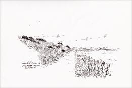 """Henk Werner, pentekening """"fietspad naar het Oerd"""" afm. ca. 18 x 26 cm."""