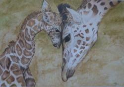 """Thera Klooster, kleurpotlood op wit papier """"moeder en jong"""", afm. 40 x 28 cm."""