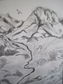 Hetty Diender, Elia, houtskool, 70 x 50 cm